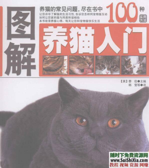 寵物貓飼養技術 養貓攻略+技巧教程+貓病經驗PDF書籍  養貓攻略技巧教程寵物貓飼養技術貓病經驗PDF書籍打包 第5張