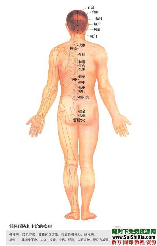 超高清版常用人體穴位經絡圖PDF 第3張
