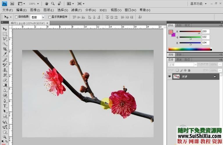 零基礎學Photoshop CS5到高手視頻教程共132集+練習素材 第4張