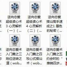 恋爱泡妞大宝典合集15集视频+7本电子书[编号869177]