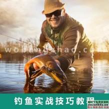 钓鱼视频教程实战大全技巧