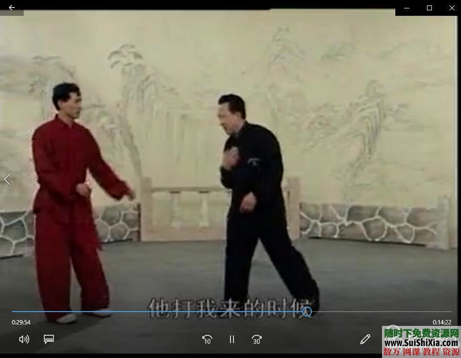 八极拳形意拳视频教程全集+独家训练步骤核心PDF教材 第8张