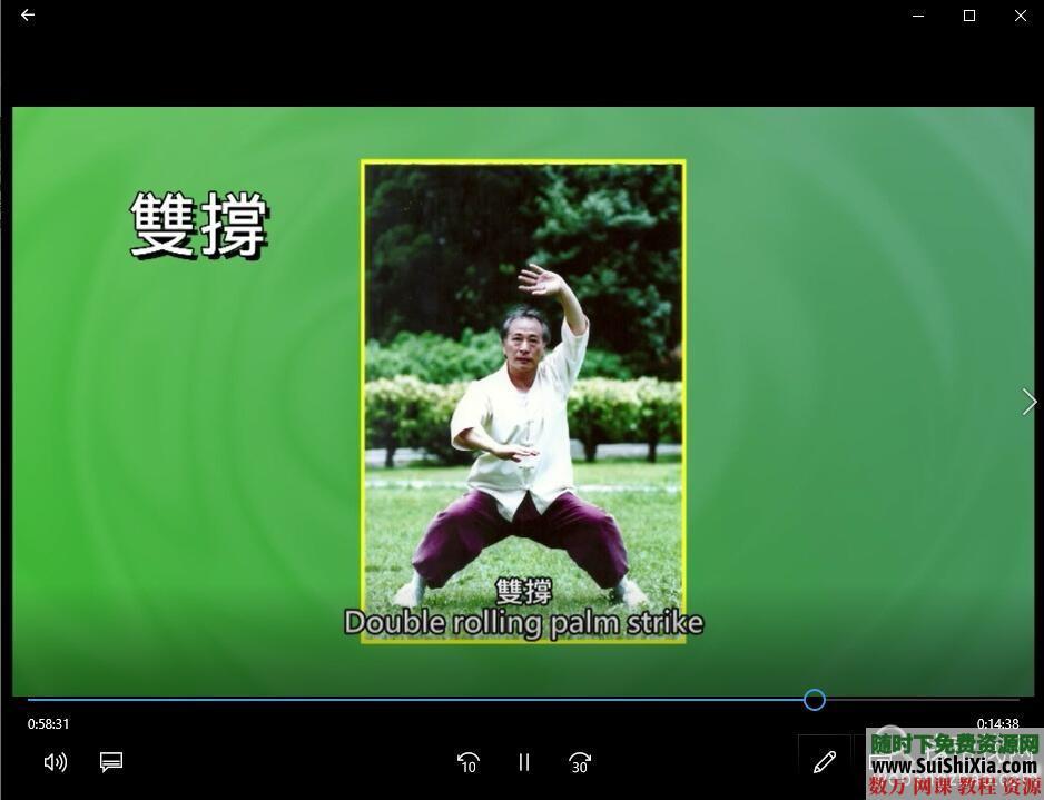 八极拳形意拳视频教程全集+独家训练步骤核心PDF教材 第13张