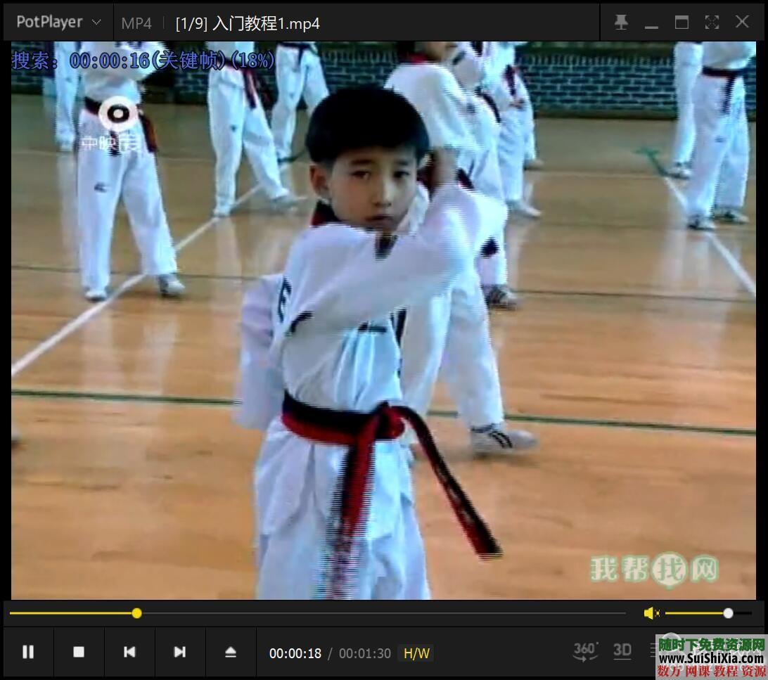 少儿跆拳道基础入门视频教程9集 第2张