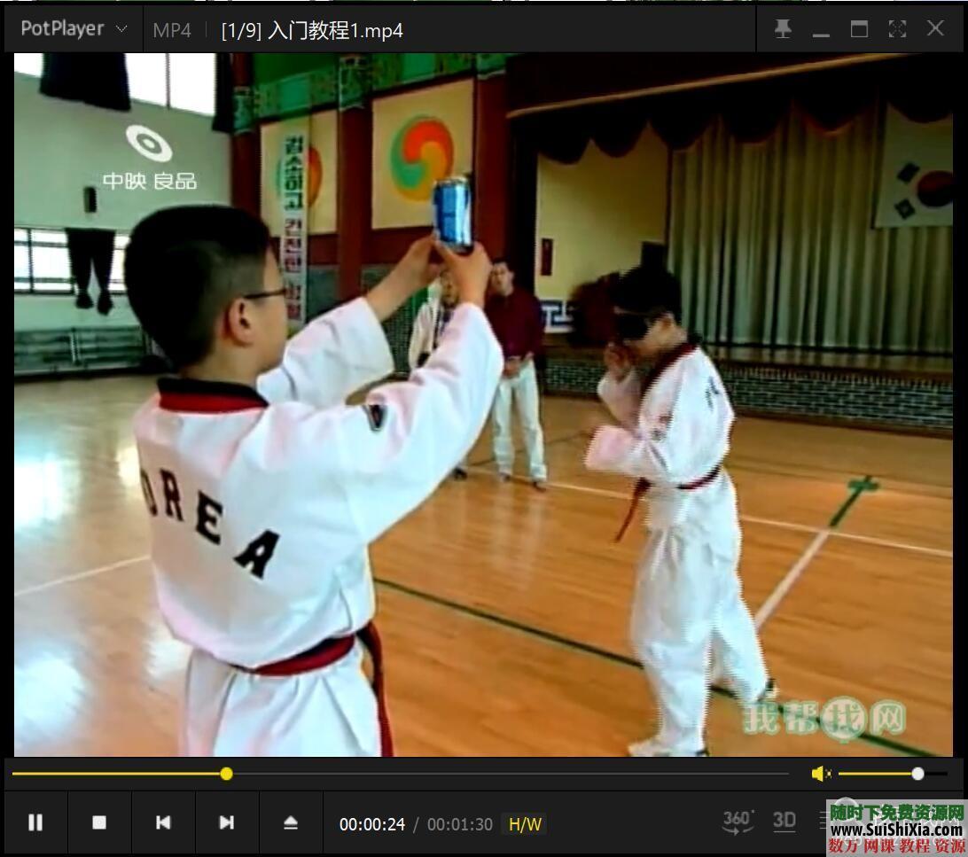 少儿跆拳道基础入门视频教程9集 第3张