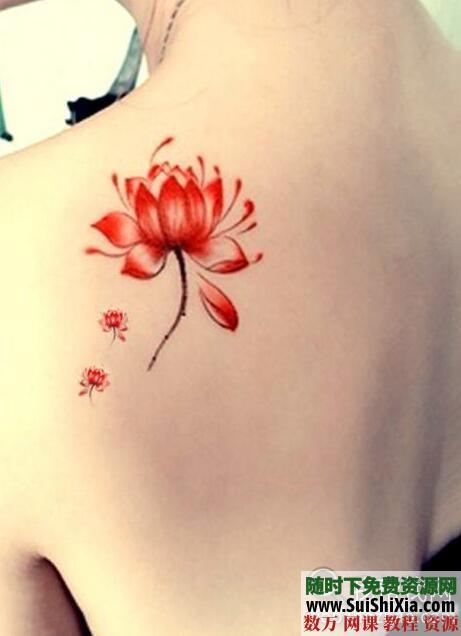 纹身教程视频教学半永久刺青学习入门自学培训课程手稿图案大全 第1张