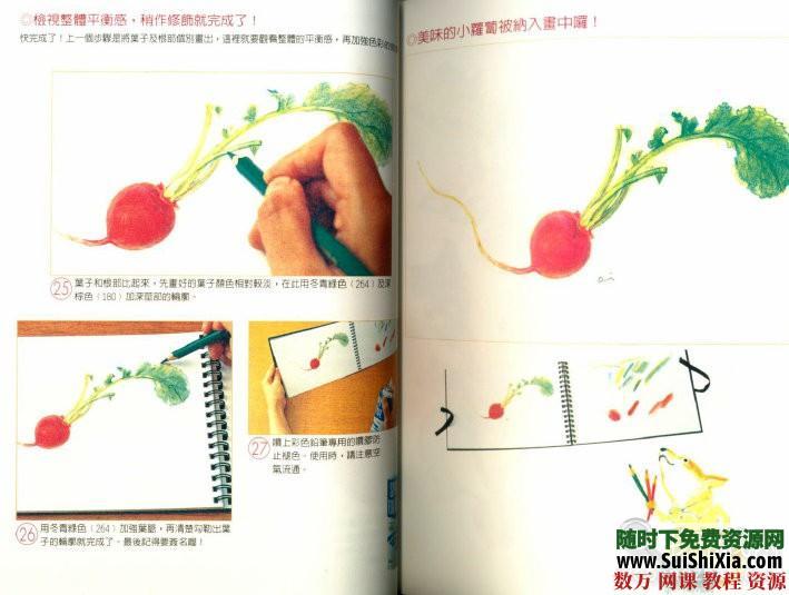 从今天开始学彩铅,彩铅画教程 第7张