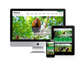 生态农业绿色食品类织梦模板(带手机端)